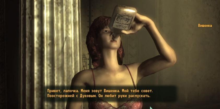 Локации Fallout 3: Жилище Дукова